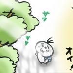 高尾山の大自然